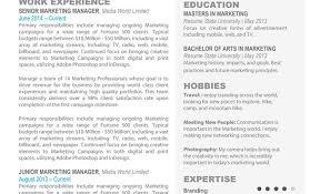 latest cover letter format resume hypnotizing marketing manager resume summary incredible