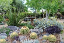 2010 southern nevada water authority green landscape winners