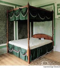 Forest Canopy Bed Canopy Dictionary Definition Canopy Defined
