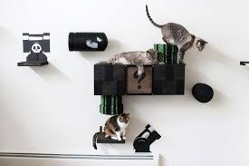 cat wall furniture catastrophic creations wall mounted cat furniture for notorious