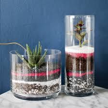 make a fun striped succulent terrarium with colored sand diy