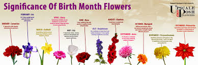 Birth Flower Of January - birth month flowers flower charms