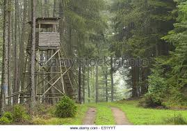 Natural Hunting Blinds Hunting Blind Stock Photos U0026 Hunting Blind Stock Images Alamy