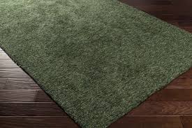 Mint Green Area Rug Green Rug Home Design Ideas And Pictures