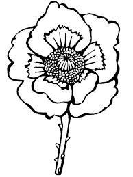 remembrance veteran u0027s coloring pages important