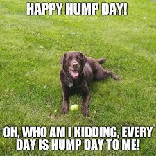 Happy Hump Day Memes - happy hump day imgflip