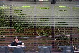 Wood Slats by Rose Cafe In Venice Gets A Face Lift By Dex Design Studio L A
