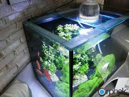 best led light for planted tank orphek pr72 planted led pendant is your best solution for your