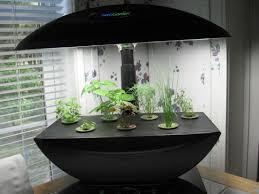 simple indoor herb garden kit with grow light ideas u2014 luxury homes