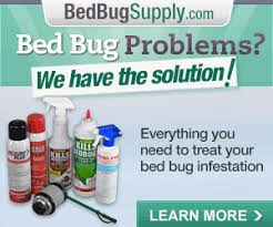 Medicine For Bed Bugs How To Kill Bed Bugs