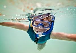 New Jersey snorkeling images Where to go scuba diving and snorkeling in aquariums jpg
