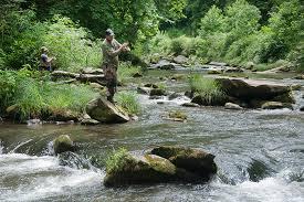 nantahala river map nantahala cascades top 100 trout river delayed harvest stocked