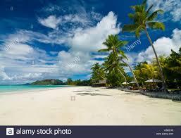beach bungalows at beach of anse volbert praslin seychelles