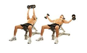 Bench Exercises With Dumbbells 10 Chest Fly Exercise And Its Benefits Bodybuilding Estore