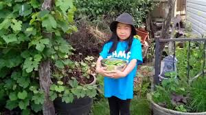 organic backyard composting for kids simple basic tutorial how