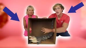 Challenge Deadly Deadly What S In The Box Challenge Live Animals