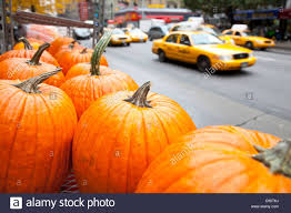 halloween in new york pumpkins taxi in the street manhattan