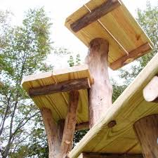 unique outdoor cat tree house ideas outdoor cat tree house