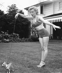 Marilyn Monroe Meme - marilyn monroe dog quote blank template imgflip
