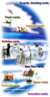 greeting cards flash cards musical cards e cards birthday cards