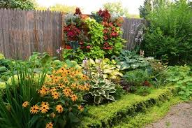 Fence Line Landscaping by Maximize Limited Space With Vertical Gardens