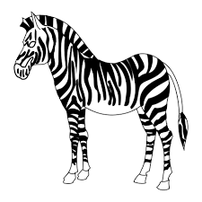 zebra color page printable coloring pages for kids animals zebra baby pictures to