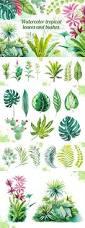 best 25 watercolor leaves ideas on pinterest leaf illustration