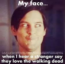 Walking Dead Birthday Meme - 37 best twd images on pinterest walking dead stuff walking dead