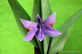 origami orchid tutorial origamido origami art