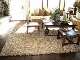 throw rugs for living room plush area rugs for living room erikaemeren