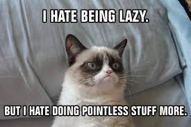 Rich Cat Meme - 50 shades of grumpy cat chap 42 as ns a better class of asexuality
