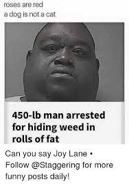 Joy Meme - 25 best memes about joy lane joy lane memes