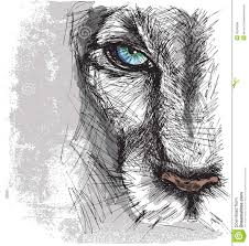 hand drawn sketch of a lion stock vector image 30245286