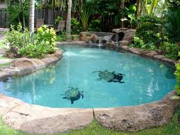 tropical studio with salt pool spa walk to vrbo