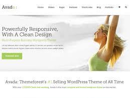avada theme portfolio order customize the avada wordpress theme with csshero