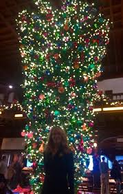 hotel s tree coronado times
