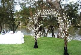 wedding arches perth stick arch maybe with some babys breath in it wedding ideas