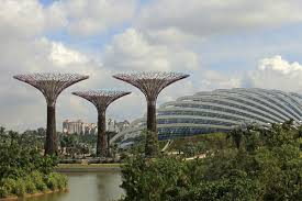 singapore s solar powered supertrees