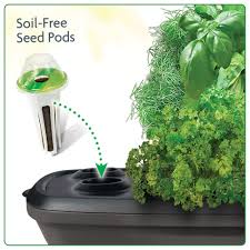 Kitchen Herb Garden Kit by Miracle Gro Aerogarden Bounty Aerogardens