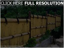 Privacy Fencing Ideas For Backyards Backyards Winsome Backyard Fence Design Outdoor Wood Fence