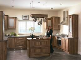 chocolate brown cupboards kitchen others extraordinary home design