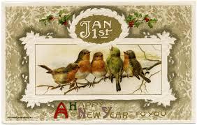 christmas cards birds christmas lights decoration