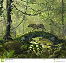 enchanted jungle forest with a panther cat stock illustration