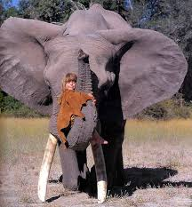 Blind Men And The Elephant Story For Children Real Life Mowgli Who Grew Up In The African Wildlife Bored