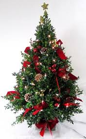 christmas tree with white lights and red bows chappell s flower shops exclusive tabletop christmas holiday tree