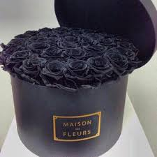real black roses where to buy real black roses on the hunt