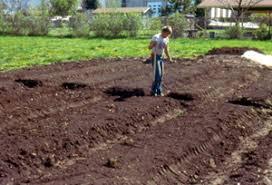 plush raised garden beds soil innovative ideas vegetable garden