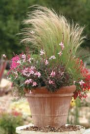 5362 best planters garden pots images on pinterest flowers