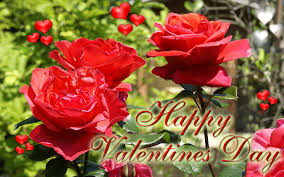 roses for valentines day happy valentines day roses happyvalentineday ecard wallpaper 7