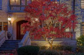 Landscape Lighting Minneapolis Why It Is Important To Use A Professional For Your Minneapolis